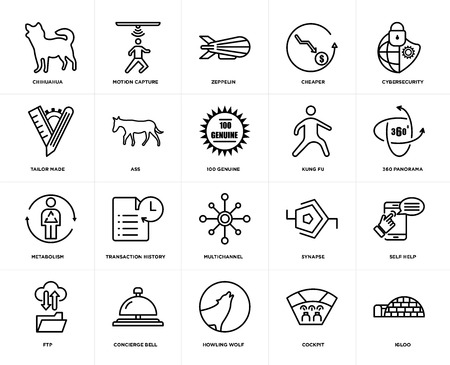 Set Of 20 icons such as igloo, cockpit, howling wolf, concierge bell, ftp, cybersecurity, kung fu, multichannel, metabolism, ass, zeppelin, web UI editable icon pack, pixel perfect