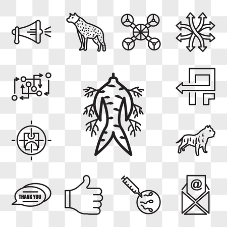 Set Of 13 transparent editable icons such as ginseng, email, ivf, thumbs up, thank you, pitbull, active shooter, pivot, methodology, web ui icon pack, transparency set Illustration
