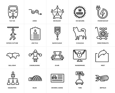 Set Of 20 icons such as zeppelin, tare, drivers license, igloo, delegation, power backup, chihuahua, chair, bull bear, job title, sociology, web UI editable icon pack, pixel perfect