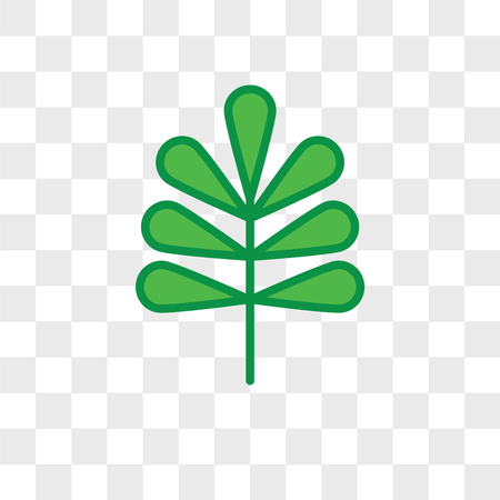 Pecan leaf vector icon isolated on transparent background, Pecan leaf logo concept Vettoriali