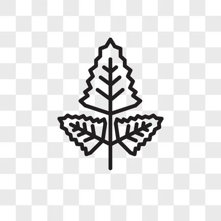 Rhomboid vector icon isolated on transparent background, Rhomboid logo concept Illustration
