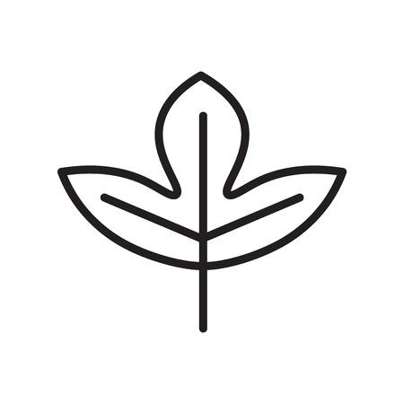 Vecteur d'icône de feuille de Sassafras isolé sur fond blanc pour la conception de votre application web et mobile, concept de logo de feuille de Sassafras