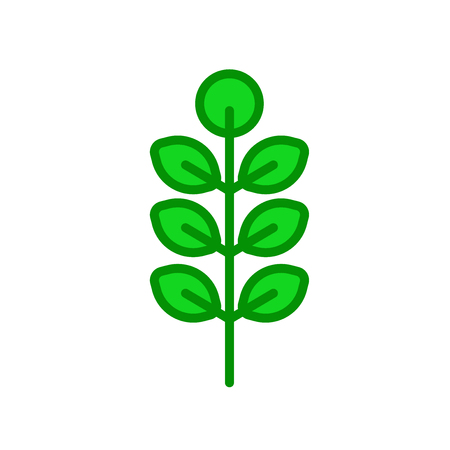 American Mountain Ash icon vector isolated on white background for your web and mobile app design, American Mountain Ash logo concept