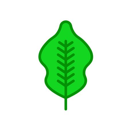 Vector icono de abedul aislado sobre fondo blanco para su diseño web y aplicaciones móviles, concepto de logo de abedul
