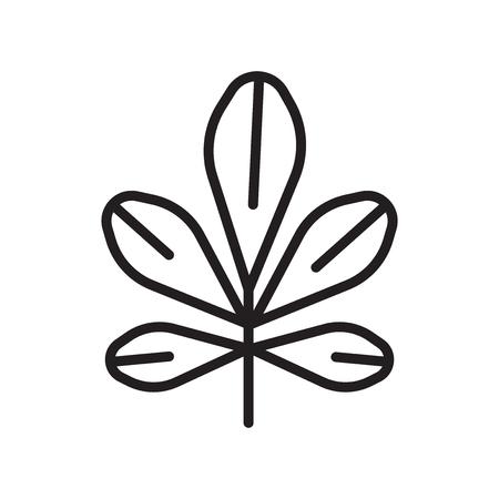 Chestnut leaf icon vector isolated on white background for your web and mobile app design, Chestnut leaf logo concept Ilustração