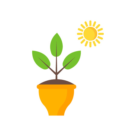 Plant pot icon vector isolated on white background for your web and mobile app design