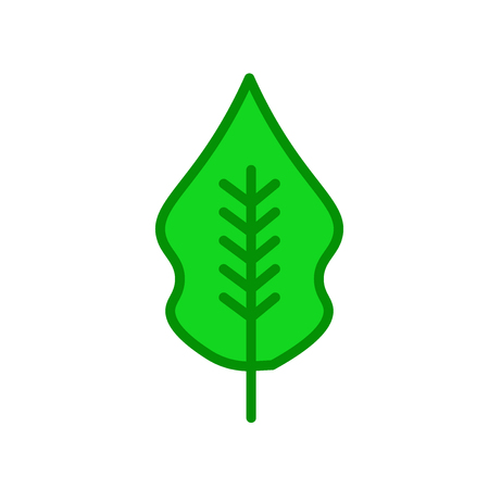 Magnolia leaf icon vector isolated on white background for your web and mobile app design, Magnolia leaf logo concept