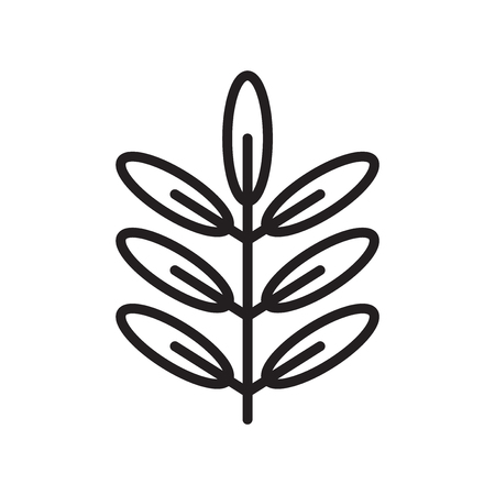 Acacia icon vector isolated on white background for your web and mobile app design Ilustracja
