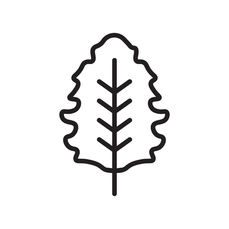 Oak icon vector isolated on white background for your web and mobile app design