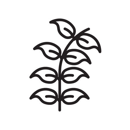 Bilberry leaf icon vector isolated on white background for your web and mobile app design