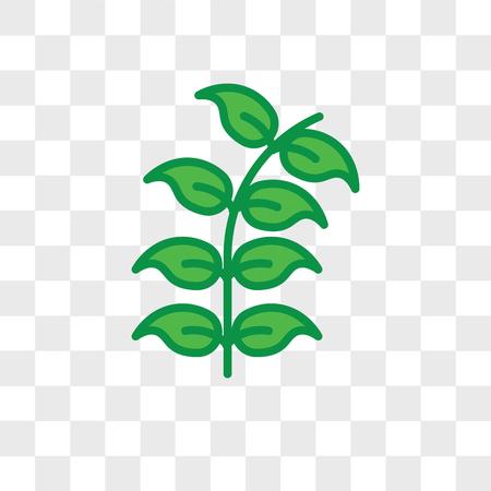 Icône de vecteur de feuille de myrtille isolé sur fond transparent, concept de logo de feuille de myrtille Logo