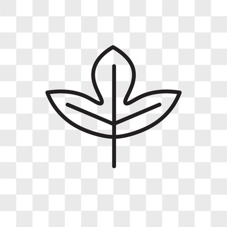 Icono de vector de hoja de Sassafras aislado sobre fondo transparente, concepto de logo de hoja de Sassafras