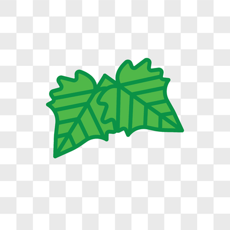 Hawthorn leaf vector icon isolated on transparent background, Hawthorn leaf logo concept