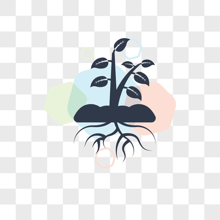 Plant and root vector icon isolated on transparent background, Plant and root logo concept