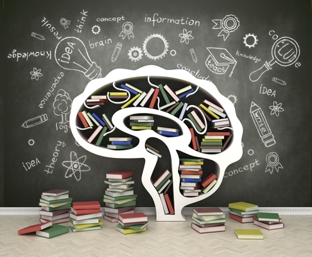 vzdělání: polička na knihy ve tvaru hlavy na šedém pozadí Reklamní fotografie