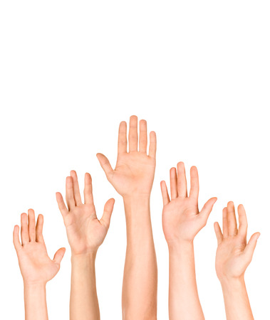 hand lifted: many open hand up on isolated white background,business concept Stock Photo