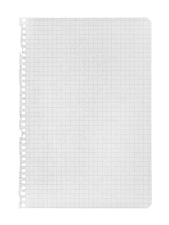 ruled paper: torn page in a cage on an isolated white background