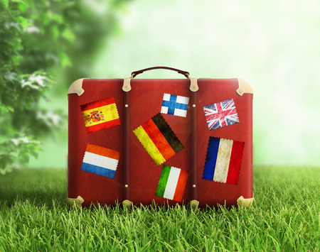 holiday destination: Old suitcase on grass, concept of travelling.