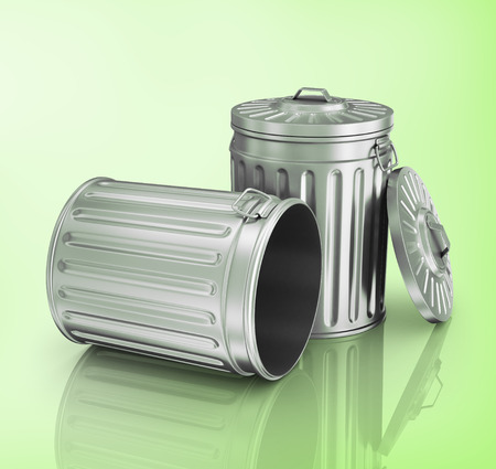 trashcan: Two steel trash can.
