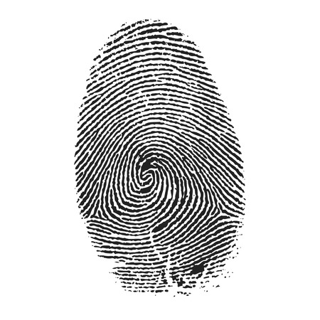指紋ベクトル  イラスト・ベクター素材