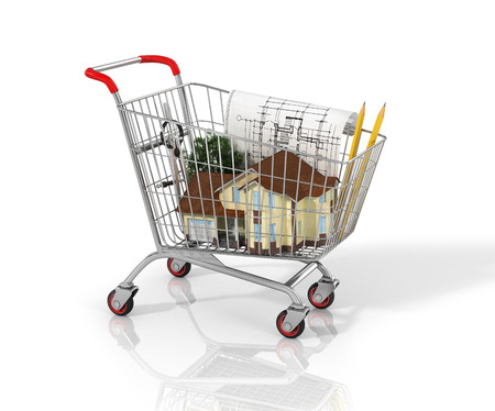 dwell house: House and blueprint in the shopping cart.