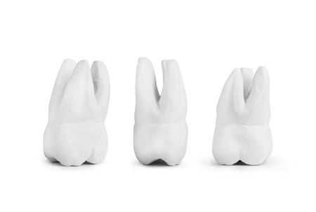 scarce resources: teeth made of gypsum isolated on white Stock Photo