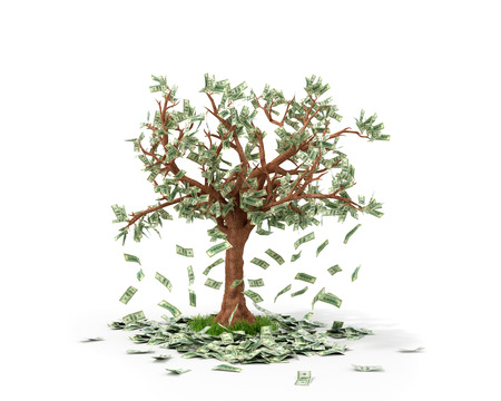 thriving: Money tree with bills growing on it and lying on white grownd.