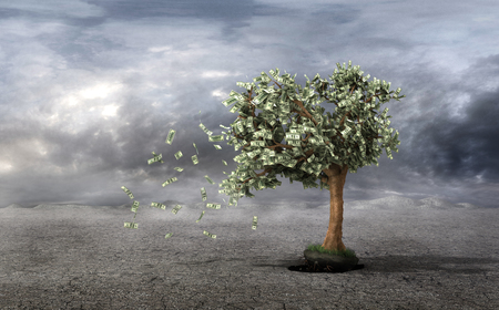 managing money: Concept of loss your money. Hand picks the money tree is taken from the earth on a grey clouds background. Loss profit. Losing your savings and managing your debt and financial budget.