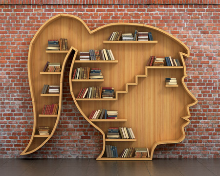 bookshelves: Concept of training. Wooden bookshelf full of books in form of woman head on a bricks background. Science about human. Psychology. A human have more knowledge.