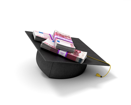 doctoral: Doctorates and the euro