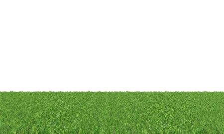 緑の芝生は、白い背景で隔離。 写真素材
