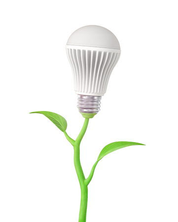 electric bulb: Concept of green energy. The LED light bulb on stem of plant on a white background.