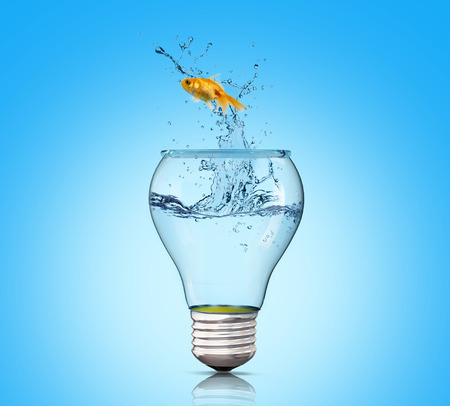 fuel and power generation: Goldfish in lightbulb. Concept freedom