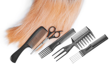 textura pelo: hair with scissors on close up isolated on white background Foto de archivo