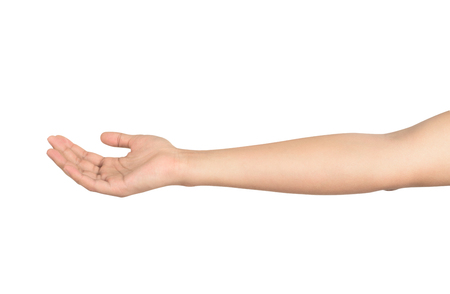 open male hand isolated on white background