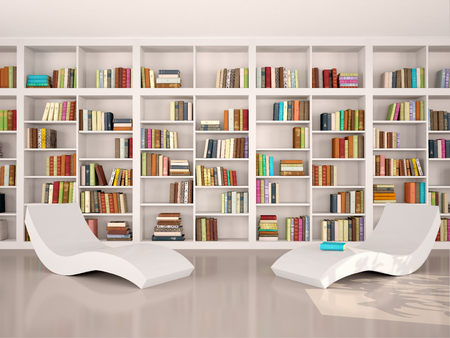 3d illustration of modern minimalistic library for otdha