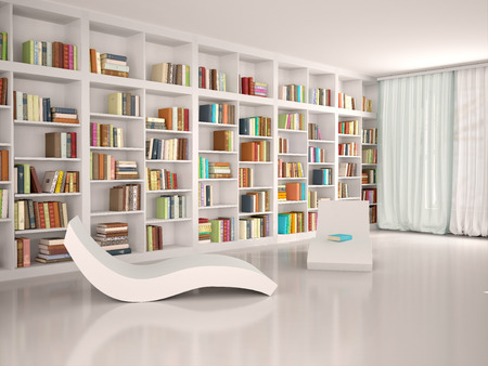 3d illustration of Modern minimalistic library for recreation