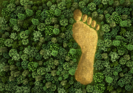 imprints: Imprint of human footprint in nature. 3d illustration Stock Photo