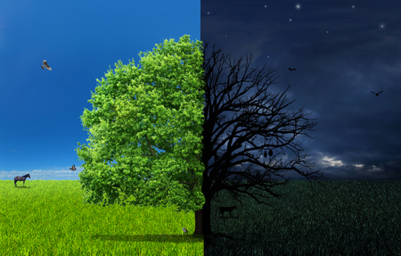 Het concept van dubbelheid. Dag en nacht van verschillende kant met dubbele boom in het midden.