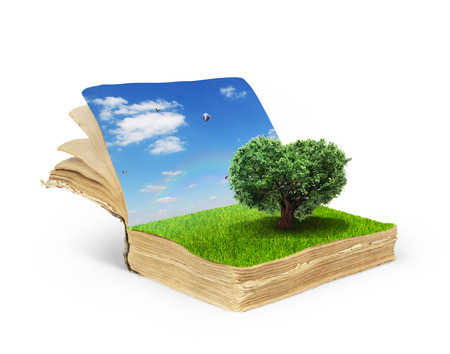 balance rainbow colors: Concept of magic book covered with grass with tree in the form of heart.Tree of life. Tree of love.Reading concept isolated on a white background.