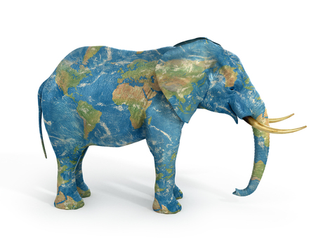 stability: Stability concept. Elephant painted in texture of world. 3d illustration