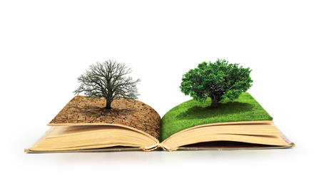 Open book. One side full of grass with a life tree, different side is desert with a dead tree. Isolated on white background.