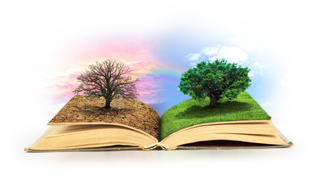 Open book. One side full of grass with a life tree, different side is desert with a dead tree.