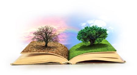 Open boek. Eén kant vol gras met een levensboom, andere kant is woestijn met een dode boom. Stockfoto