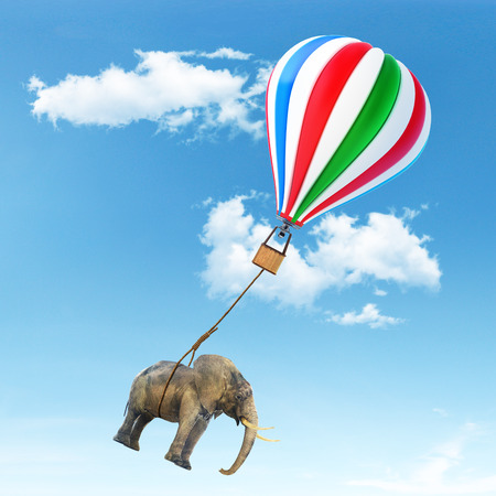 An elephant being lifted by aerostat.
