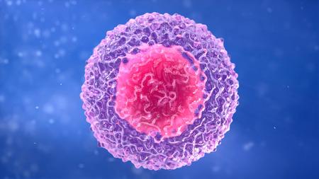 T-lymfocyt. witte bloedcel. Lymfocyt. B-lymfocyt Stockfoto