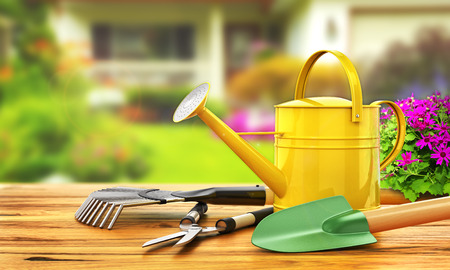 garden patio: Concept of gardening. Gardening tools (Watering can, shovel, rake, flowers and scissors) on the wooden table. 3d illustration