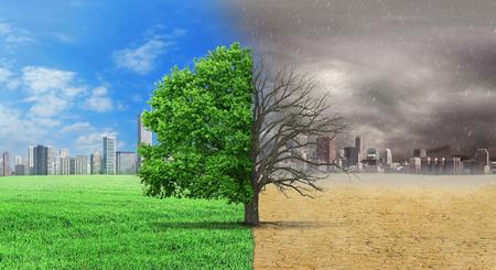 기후의 개념이 바뀌 었습니다. 도시 배경에 기후 변화의 교차로에 서있는 절반 살아 있고 절반 죽은 나무. 환경을 저장하십시오.