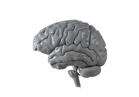 Human brain with geometry cell on the white  background. Concept 3d render, illustration