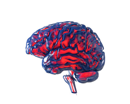 Human brain with transparency chanel, isolated on white. Concept 3d render, illustration Stock Photo